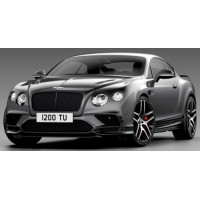 BENTLEY Continental Supersports, 2017, magnetic