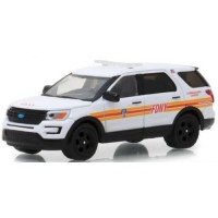 FORD Interceptor